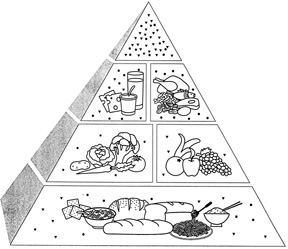 Three-Dimensional Food Pyramid