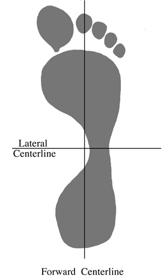 The forward and lateral centerlines of the foot